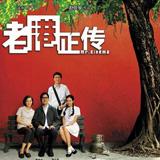 《老港正传》,第12届华表奖