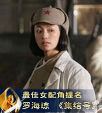 第17届金鸡电影节