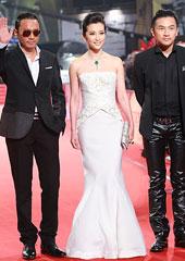 第46届台湾金马奖:男女拍档携手红毯