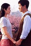 西部电影集团,《桃花灿烂》